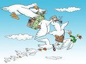 Goose Team Work