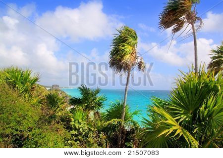 Caribbean beach in Tulum Mexico turquoise aqua with chit palm trees