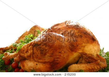 Roasted Turkey Isolated