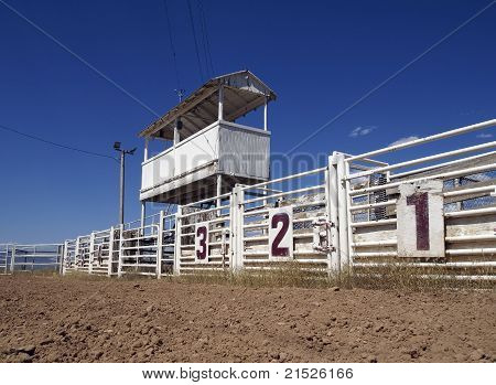 Rodeo Gates