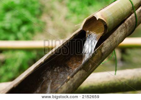 Primitive Plumbing