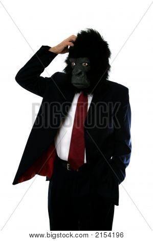 Confused Gorilla Man