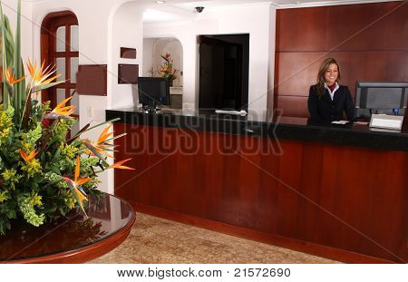 Young Business Lady Work On Reception