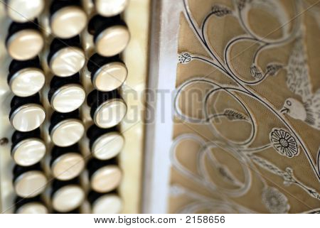 Diatonic Accordion Close Up