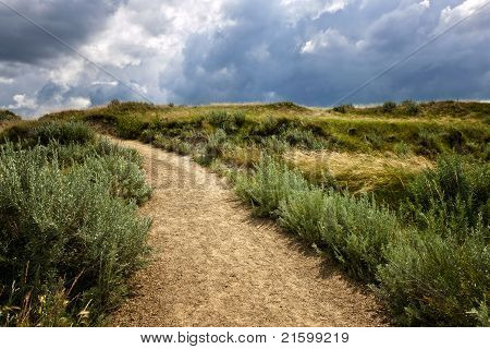 Trail In Badlands In Alberta, Canada