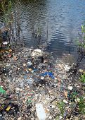 foto of excrement  - water pollution in river - JPG