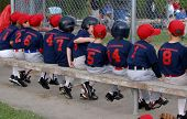 Baseball Team On Bench
