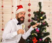 Man With Beard Holds Champagne Glass And Shows Tree Toy. poster