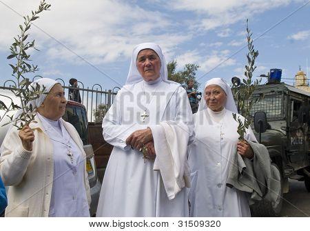 Jerusalem Palm Sunday