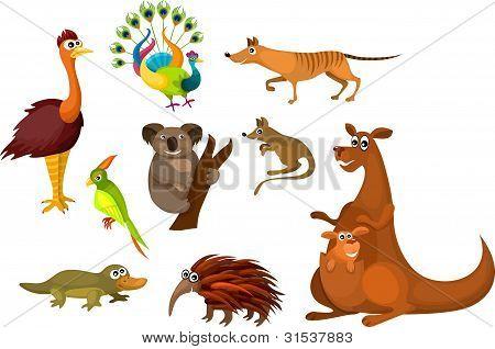 Animais australianos
