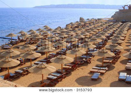 Perfect Beach Scene
