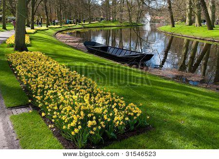 Tulip Garden In Keukenhof, Netherlands