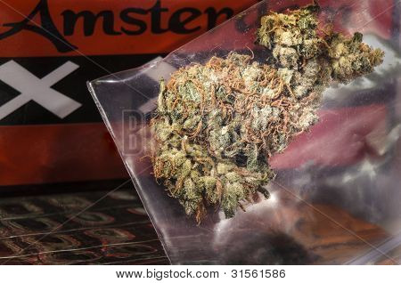 Dutch Weed with Amsterdam sign