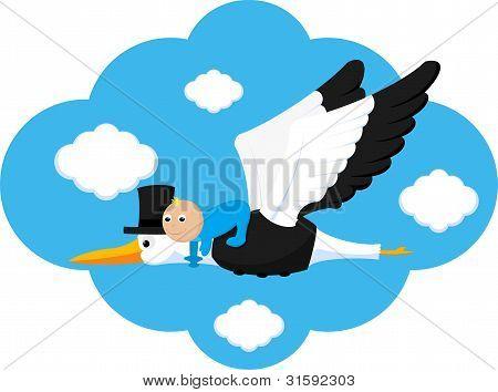 Elegant Stork Delivers Baby Boy