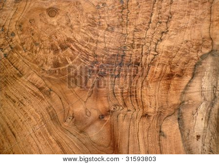 Karelian Birch Wood Texture