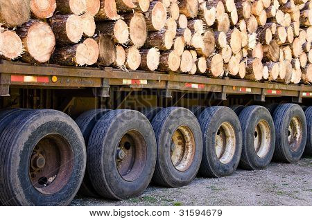 pine logs on flatbed trailer