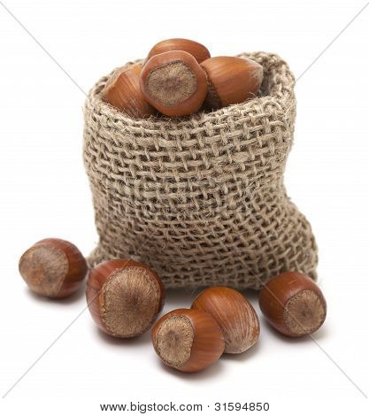 Hazelnuts In A Miniature Burlap Sack Isolated On White