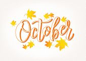 Hand Sketched October Text. Lettering Typography. Vector Illustration As Poster, Postcard, Greeting  poster