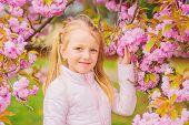Get Rid Of Seasonal Allergy. Girl Enjoying Floral Aroma. Pollen Allergy Concept. Kid On Pink Flowers poster
