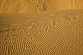 image of windswept  - Windswept ripples on sand dunes in California - JPG