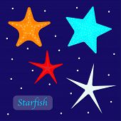 Set Of Different Starfish Isolated On Dark Blue Background. Red, Blue , White And Orange Starfish. C poster