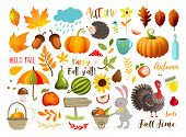 Autumn Set With Hand Drawn Elements. Calligraphy, Fall Leaves, Animals And Other. Vector Illustratio poster