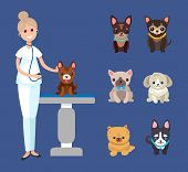 Veterinarian Service, Pets Clinic With Dogs Breeds Isolated Domestic Animals Vector. Medicine Treatm poster