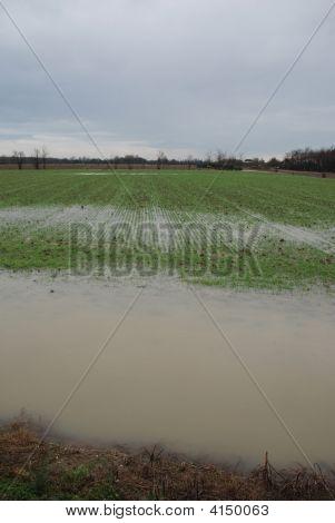 überflutet Feld