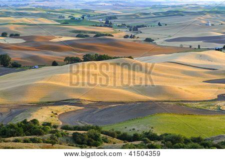 Tierras de cultivo escénica del balanceo
