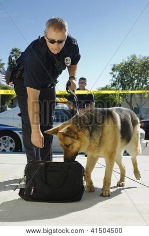 Policía examinar una bolsa con perro entrenado