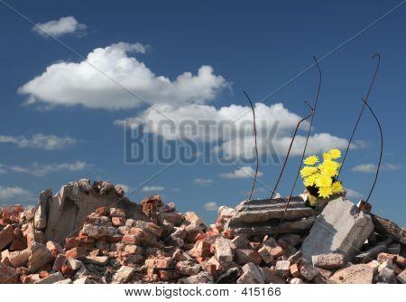 Hope On Ruins