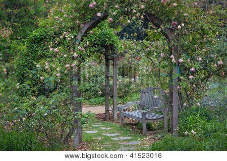 English Garden After The Rain