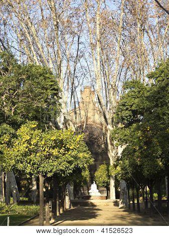 Umbraculum: Building Garden, Ciutadella Park, Barcelona