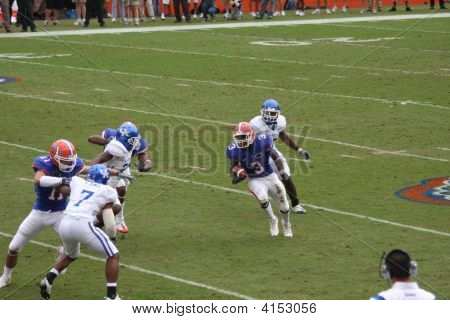 Fla Kentucky Rainey Swamp Gainesville Football