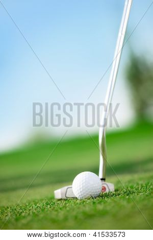 A golf club with golf ball on a golf course