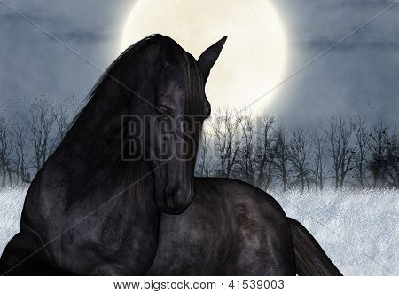 Under The Winters Moon, Equine Greeting Card or Wall Art