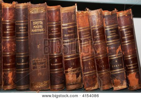 Row Of Old Richly Decorated Book Spines