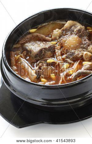 yukgaejang, carne picante e sopa de legumes, comida coreana