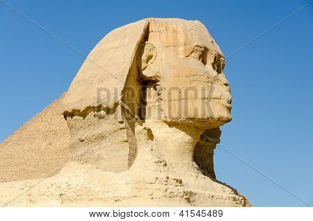Head of the Great Sphinx of Giza, Egypt