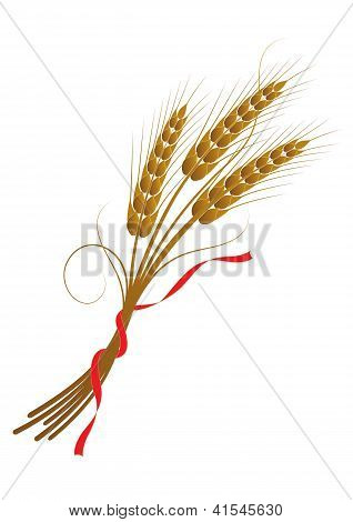 Sheaf Of Wheat Tied With A Ribbon