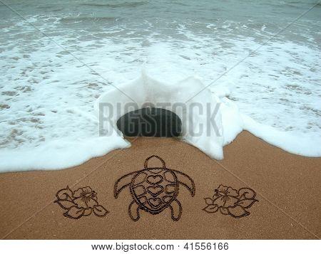 Turtle & Hibiscus