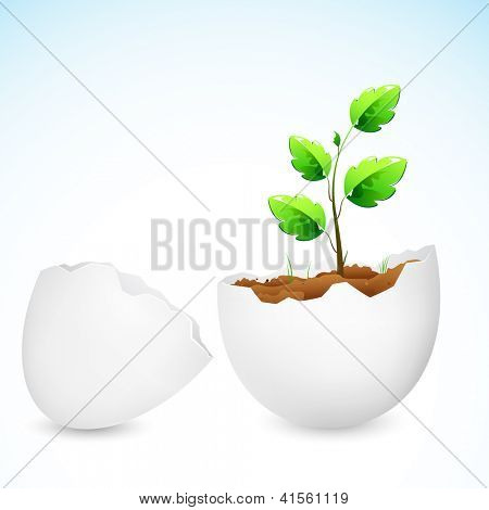 illustration of plant sapling growing in broken egg shell