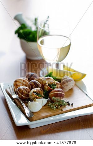 French dishes -  Escargots de Bourgogne (snails with herbs butter)