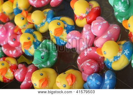 Rubber ducks floating in water