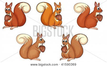 Illustration of five squirrels eating on a white background