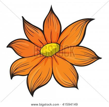 Illustration of a flower on a white background