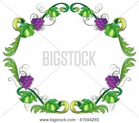 Illustration of a round vine fruit border on a white background