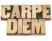 Enjoy life before it is too late, existential cautionary Latin phrase by Horace - Carpe Diem  - isol