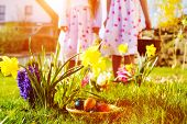 Children on an Easter Egg hunt on a meadow in spring, in the foreground is a basket with eggs