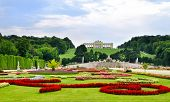 stock photo of royal palace  - Gardens at Schonbrunn Palace Vienna - JPG